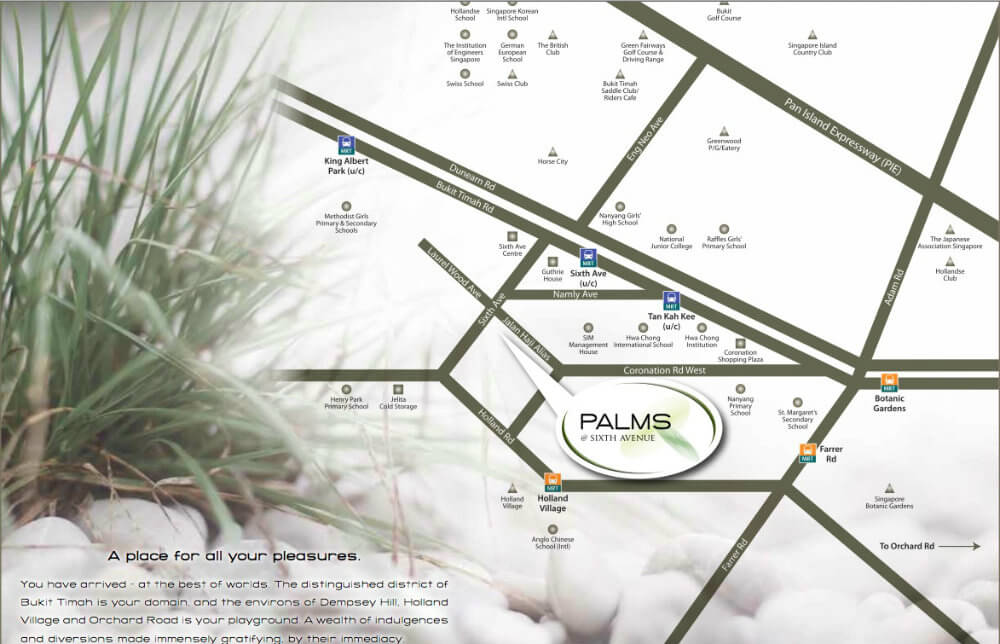 Palms @ Sixth Avenue Location