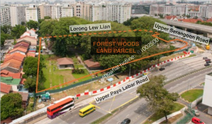 Forest Woods Actual Site Along Lorong Lew Lian